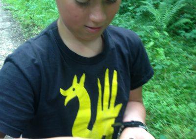 Kleine Tiere entdecken   –   A la découverte des petites bêtes